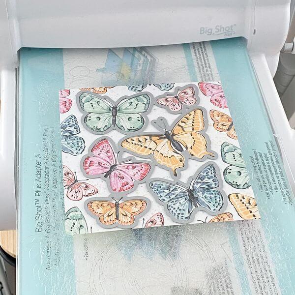 Schmetterlinge ausstanzen - BUtterfly Brilliance