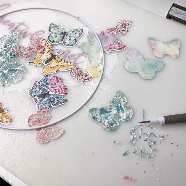 Schmetterlinge vorbereiten